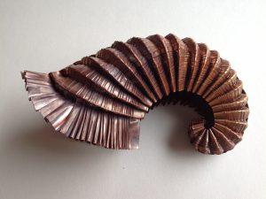 Ammonite open spiral. by Lizzie  Sanders
