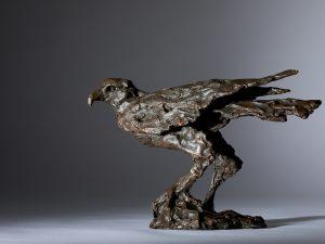 Watching You!' - A Harris Hawk (Bronze resin