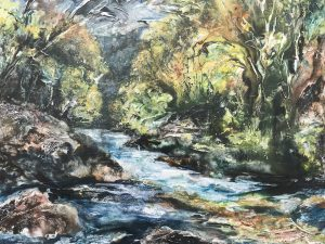 Salmon leap at Withypool by Claire Western